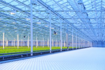 controlled environment agriculture recruiting