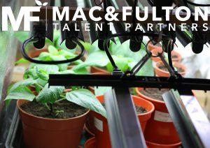 horticultural lighting sales manager