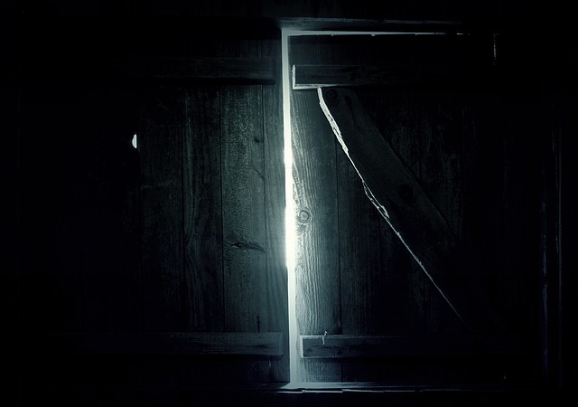 Grow Light Leaks and Sealed Grow Rooms - Mac & Fulton ...