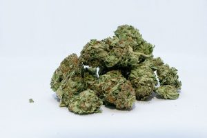 cannabis popcorn buds