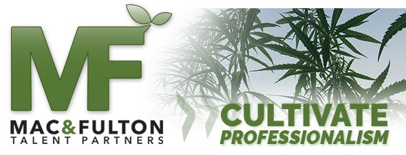 cannabis writers, hydroponics experts, recruiting company